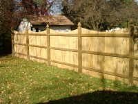Solid Privacy Fence with Scallop