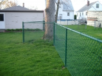 Green Chain Link with a Bump Out for Tree